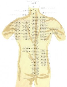 Thung's body Chart